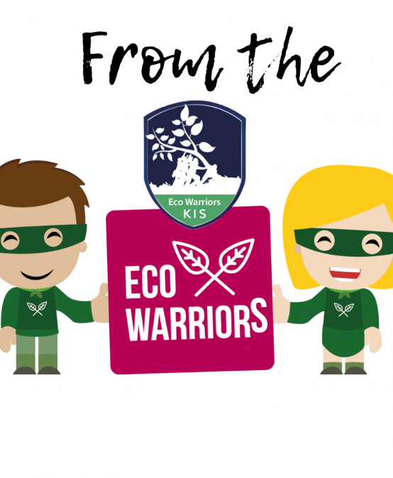 From the Eco Warriors 26.06.2021